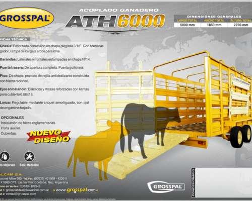 Acoplado jaula Grosspa ATH 6000