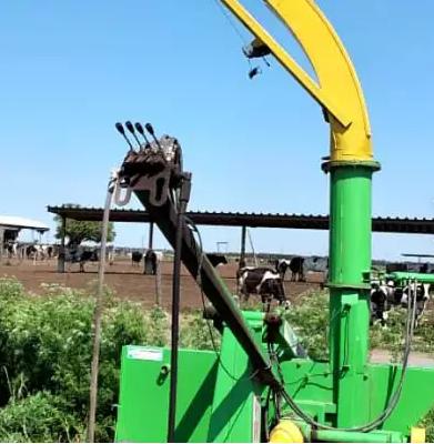 Extractora Fraga Furca
